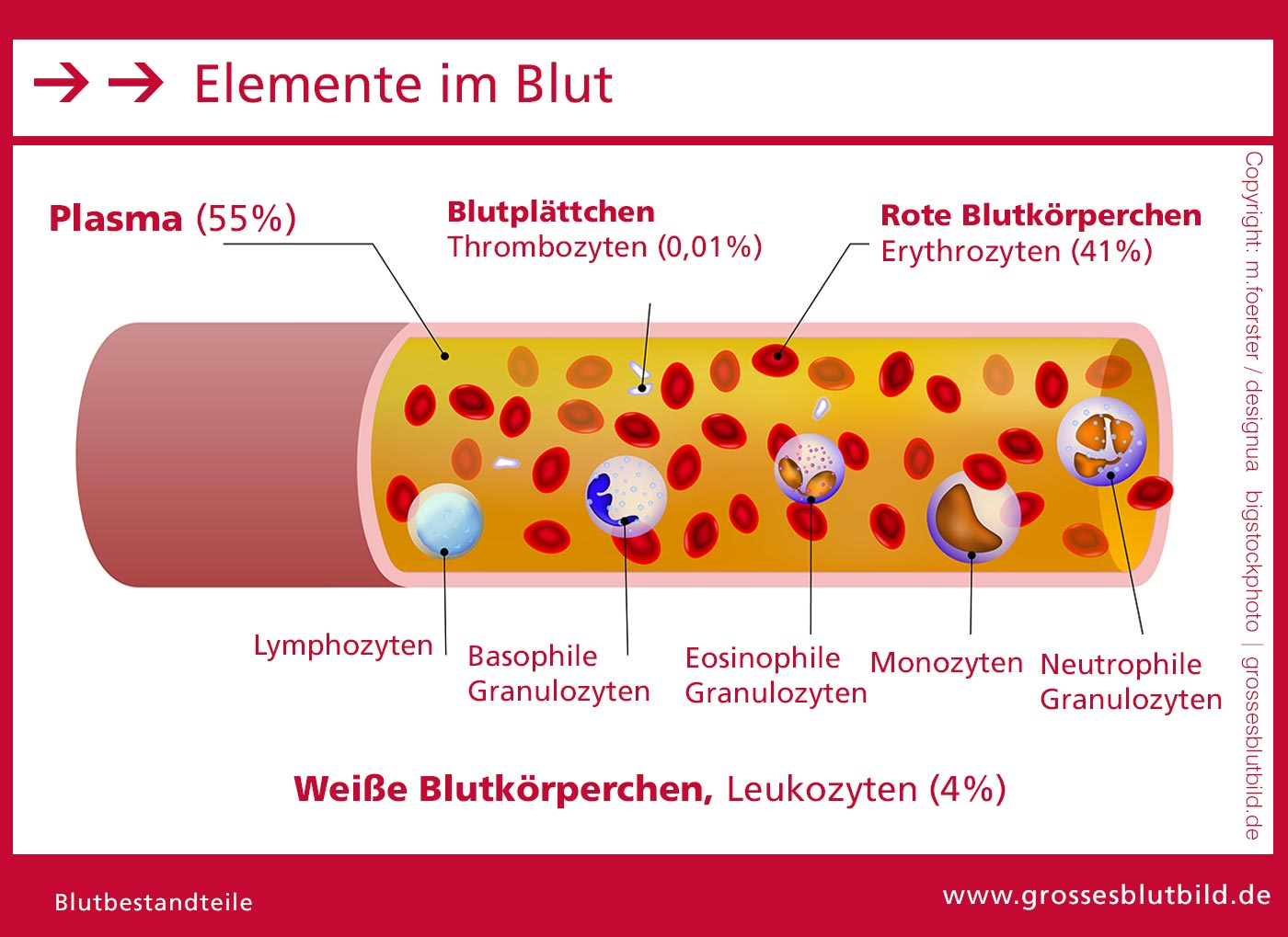 Blutelemente